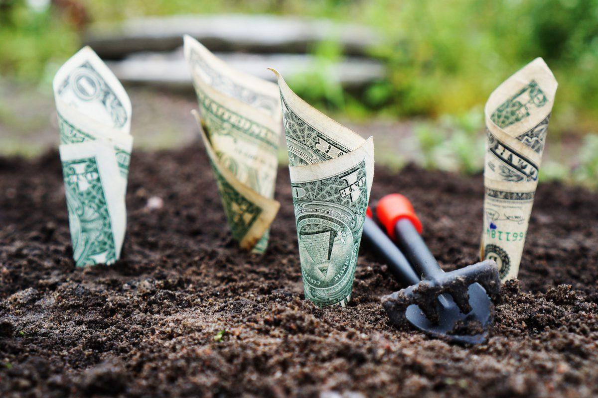 Hoe je bakken geld raapt in piepkleine niches